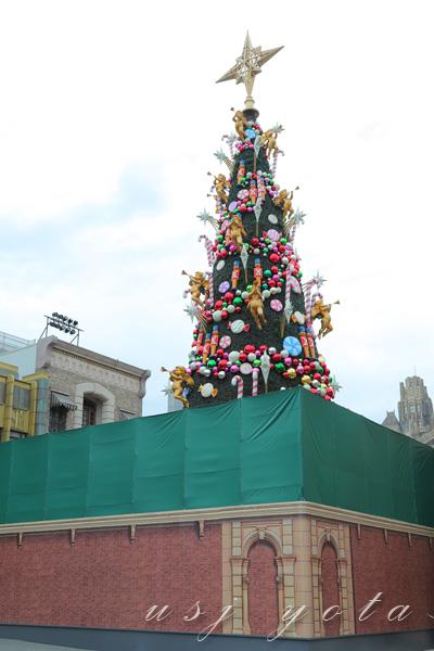 クリスマスツリーが姿を表した