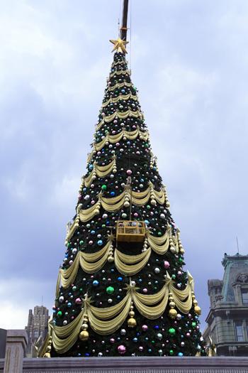 クリスマスの準備が始まる
