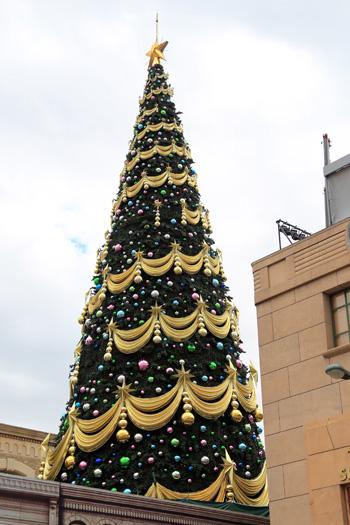 クリスマスツリー制作中